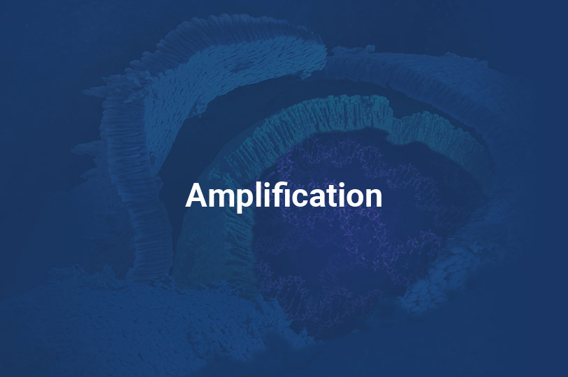 amplificationtile