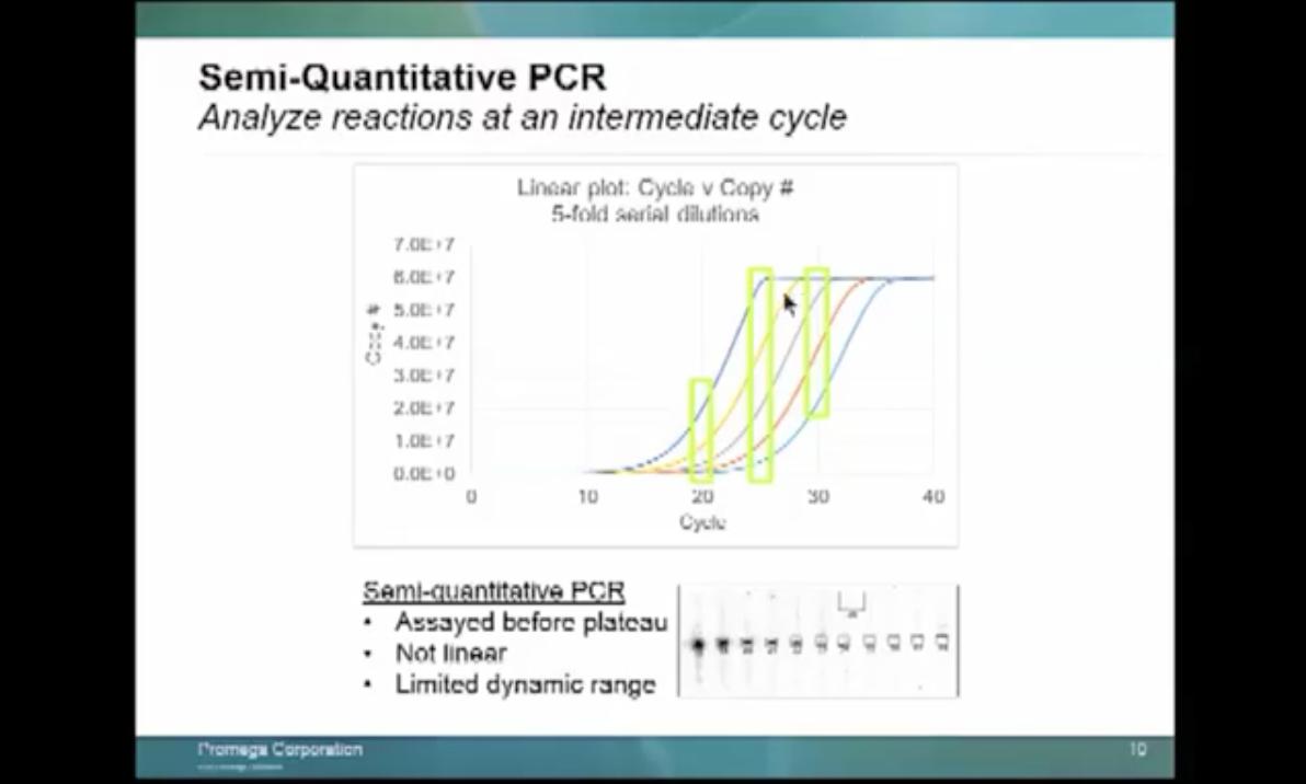 qPCR Formation