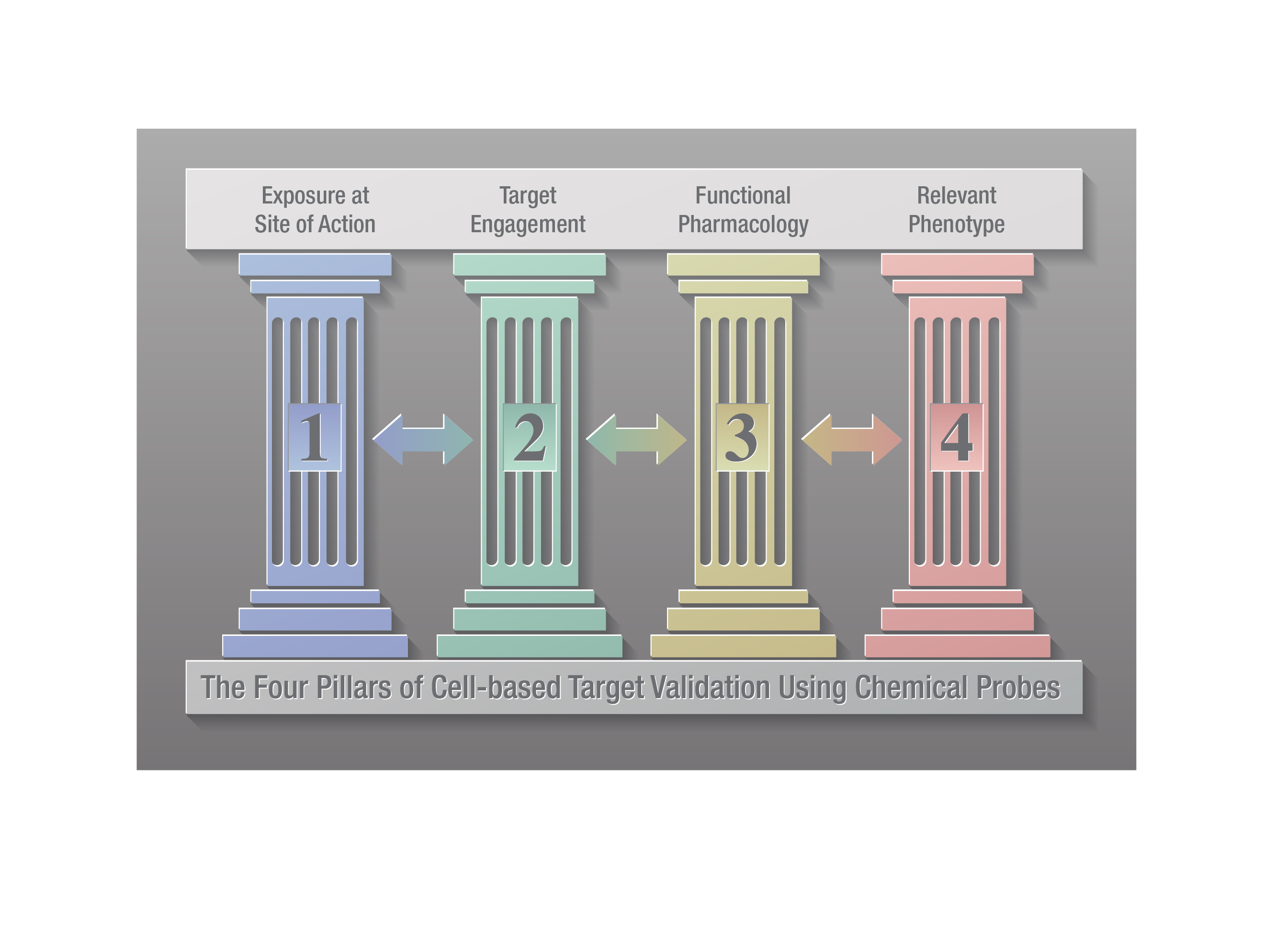 The four pillars of cell-based target validation.