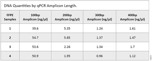 DNA quantities by amplicons length in a qPCR amplification.