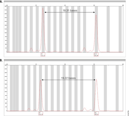 Amplification results of GT37190 DNA with PowerPlex® ESI 17 Pro and ESI 17 Systems