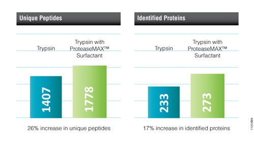 Benefits of using ProteaseMAX™ Surfactant for in-gel digestion.