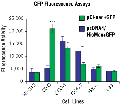 The levels of GFP expression for pCI-neo+GFP and pcDNA4/HisMax+GFP in different cell lines.