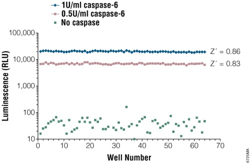 Z´-factor value analysis of the Caspase-Glo 6 Assay.