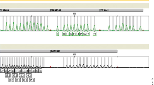 Missing allele calls at D1S1656, D2S441 and D12S391 loci.