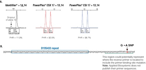 An example of discordance with the D19S433 locus between three kits.