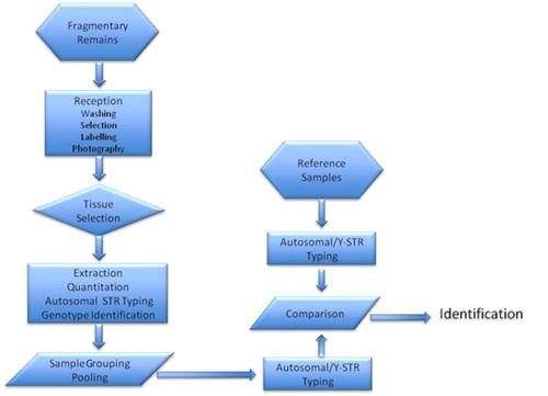 fingerprinting research paper