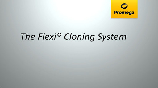 Flexi Cloning System Animation