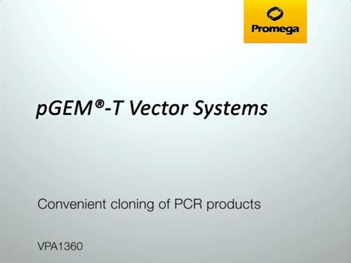 pGEMT Vector Systems Video