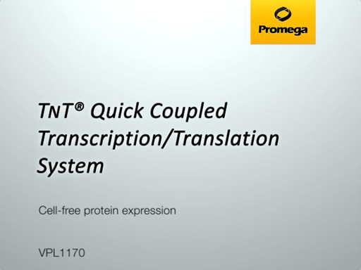 TNT Quick Coupled Transcription Translation System Video